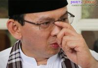 MUI Harap Ahok Minta Maaf Mengenai Ucapan Terkait Surat Al-Maidah 51