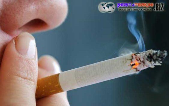 Berikut Kualitas Sperma Dari Seorang Pencandu Rokok