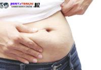 Faktor Lain Selain Makanan Yang Dapat Membuat Berat Badan Meningkat
