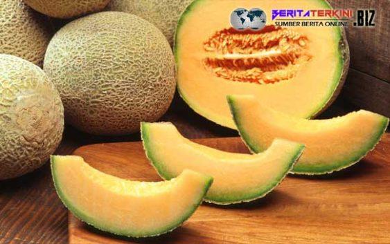 Harga Melon Bisa Melewati Harga 1 Buah Mobil Baru Bagaimana Bisa?